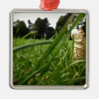 Hoja en hierba adorno cuadrado plateado