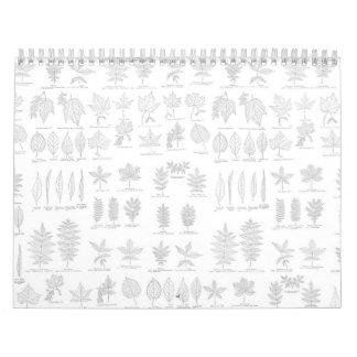 Hoja gris dibujada botánica del bosquejo de la calendarios de pared