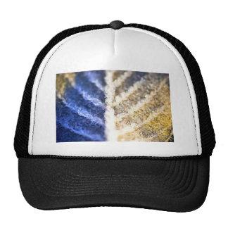 Hoja helada macro gorras de camionero