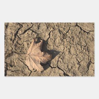 Hoja muerta en el suelo sucio seco - fotografía