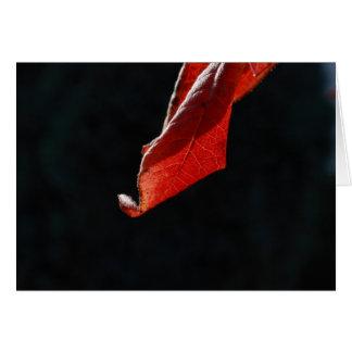 hoja roja del otoño tarjeta pequeña
