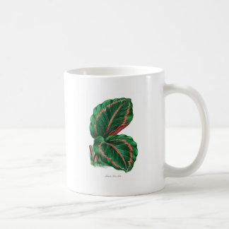 hoja tropical #4 taza