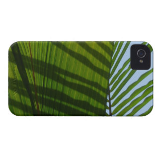 Hoja tropical del verde abstracto de la fotografía Case-Mate iPhone 4 protector