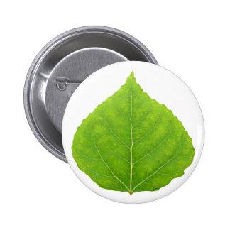 Hoja verde #11 de Aspen Pin Redondo De 2 Pulgadas