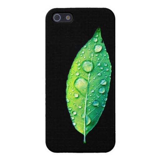 Hoja verde clara con las gotas de agua en negro iPhone 5 cárcasa