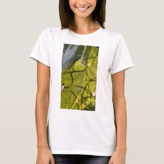 hoja verde con los tendrils del musgo español en playera