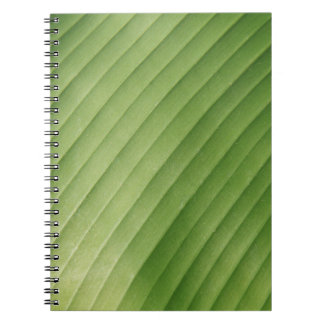 Hoja verde del plátano cuadernos