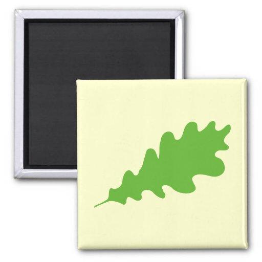 Hoja verde, diseño de la hoja del roble imán para frigorífico