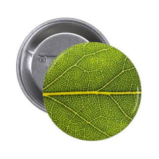 Hoja verde ecológica pin