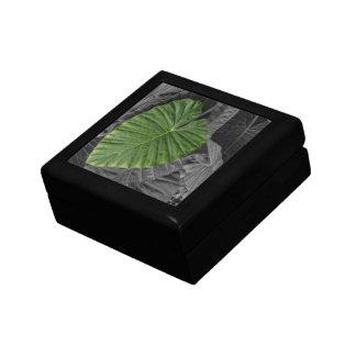 Hoja verde en forma de corazón caja de regalo