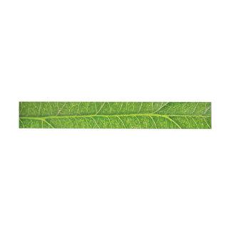 hoja verde etiquetas envolventes de dirección