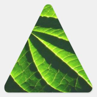 Hoja verde fresca pegatinas de triangulo personalizadas