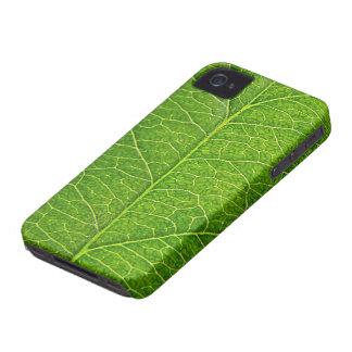 hoja verde iPhone 4 cárcasas