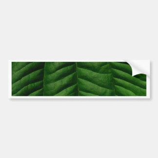 Hoja verde grande etiqueta de parachoque