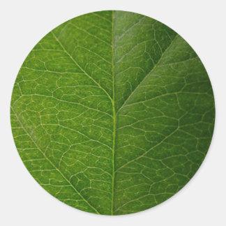 Hoja verde etiquetas
