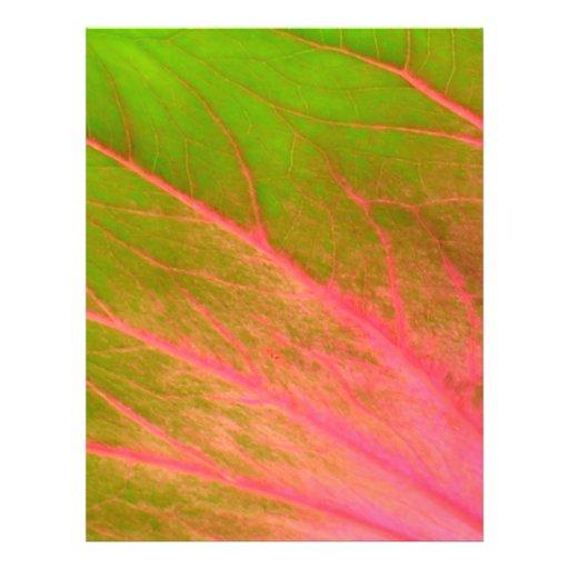 "hoja verde rosada folleto 8.5"" x 11"""