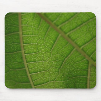 Hoja verde mousepad