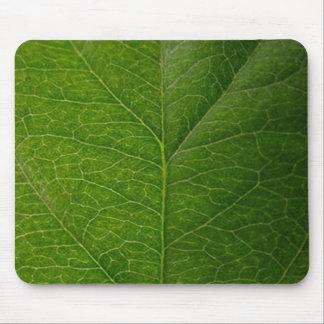 Hoja verde mousepads