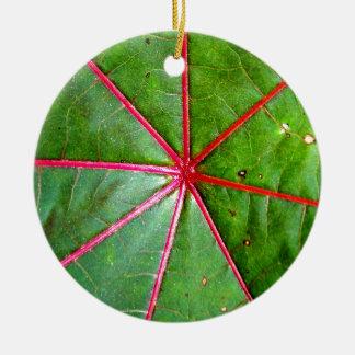 Hoja verde y roja del echador ornamento de navidad