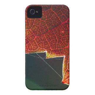 Hoja y Web de la uva de la caída Carcasa Para iPhone 4