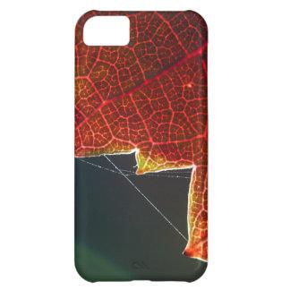 Hoja y Web de la uva de la caída Funda Para iPhone 5C