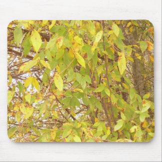 hojas 2 de la caída alfombrilla de ratones