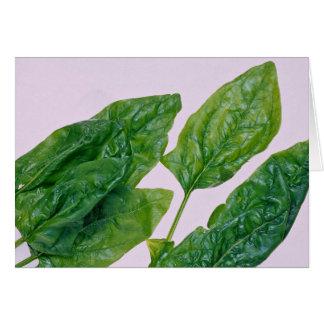 hojas alimenticias de la espinaca tarjeta de felicitación