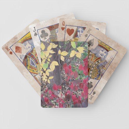 Hojas amarillas y rojas de la caída barajas de cartas