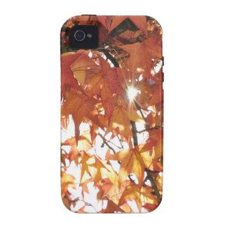 Hojas anaranjadas del otoño con el sol duro iPhone 4 funda