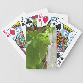 Hojas Bicycle Playing Cards