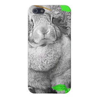 Hojas blancos y negros del verde del conejo gigant iPhone 5 fundas
