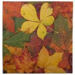 Hojas brillantemente coloreadas de la caída servilletas imprimidas