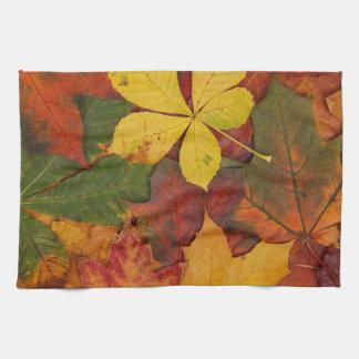 Hojas brillantemente coloreadas de la caída toallas