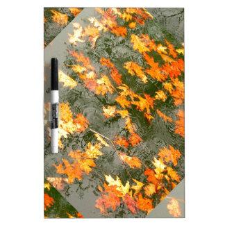 hojas caidas en lluvia pizarra blanca