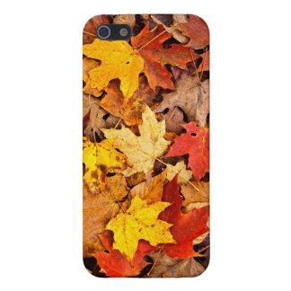 Hojas caidas en otoño iPhone 5 funda