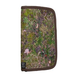 Hojas caidas secadas en la hierba molida - totalme planificadores