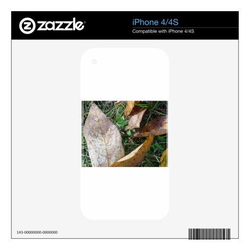 hojas calcomanías para iPhone 4S
