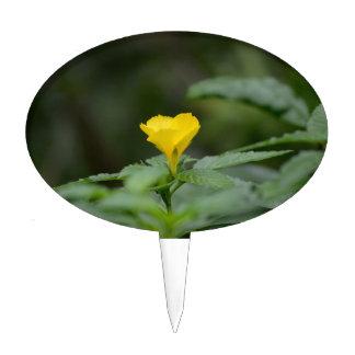 hojas cara arriba del verde de la flor amarilla figura de tarta