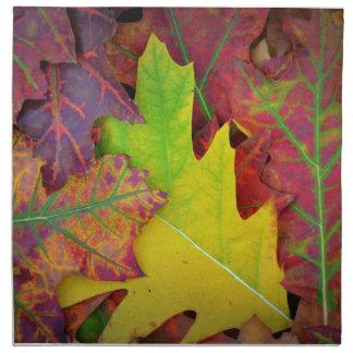 Hojas coloridas de la caída servilleta de papel