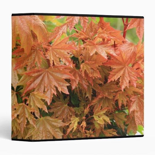 """hojas de arce carpeta 1 1/2"""""""