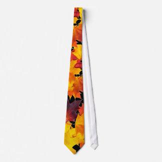 Hojas de arce corbata
