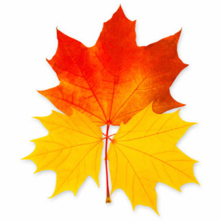 Hojas de arce del otoño fotoescultura vertical