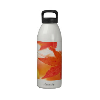 Hojas de arce del rojo anaranjado botella de agua