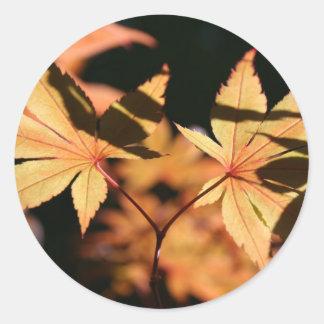 Hojas de arce japonesas colores de 1 otoño pegatina redonda