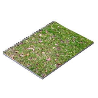 Hojas de arce secas en campo de hierba verde fresc libro de apuntes