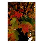 Hojas de Blank_Autumn Tarjetón