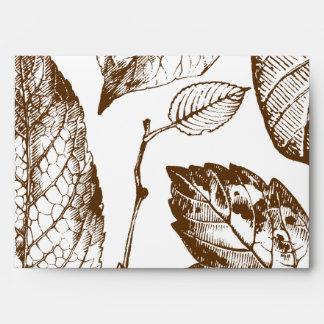 hojas de Brown de la opción 2 del sobre 5x7