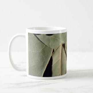 Hojas de la bahía taza de café
