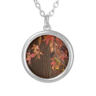 hojas de la caída colgante redondo