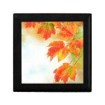Hojas de la caída del otoño cajas de regalo